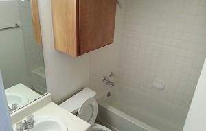 nu-tt-bathroom